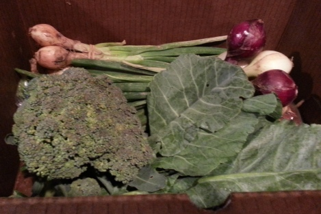 A Typical CSA Box Stuffed with Fresh Produce