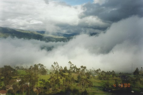 Driving Through an Andean Cloud Forest